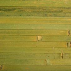 Бамбук (5)